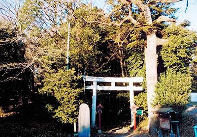 旧箱根ヶ崎村の鎮守社「狭山神社」。1000年近い歴史をもつ