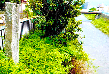 行人橋周辺。江戸期この辺りはたびたび氾濫し、旅人を悩ませた